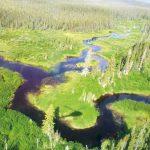 Image de l'article «L'environnement, la belle et la bête des promoteurs»