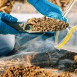 Image de l'article «Hydrocarbures Biogéniques, Pétrogéniqueset Pyrogéniques»